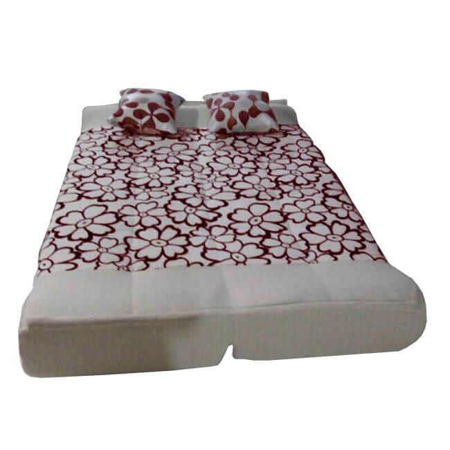 sofa giường tháo giặt
